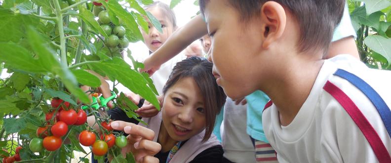 宮内幼稚園 イメージ画像